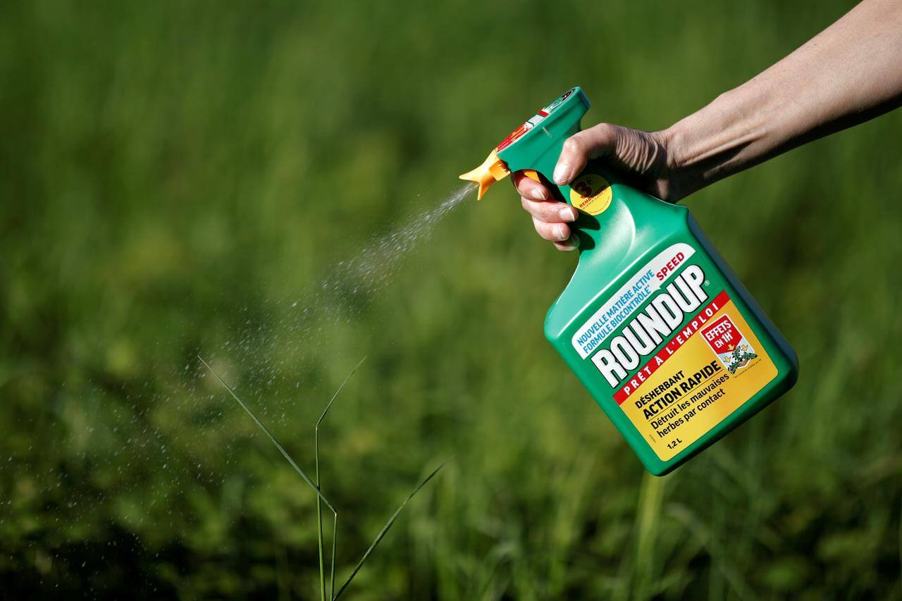 Second Trial For Bayer's Roundup Cancer Risk
